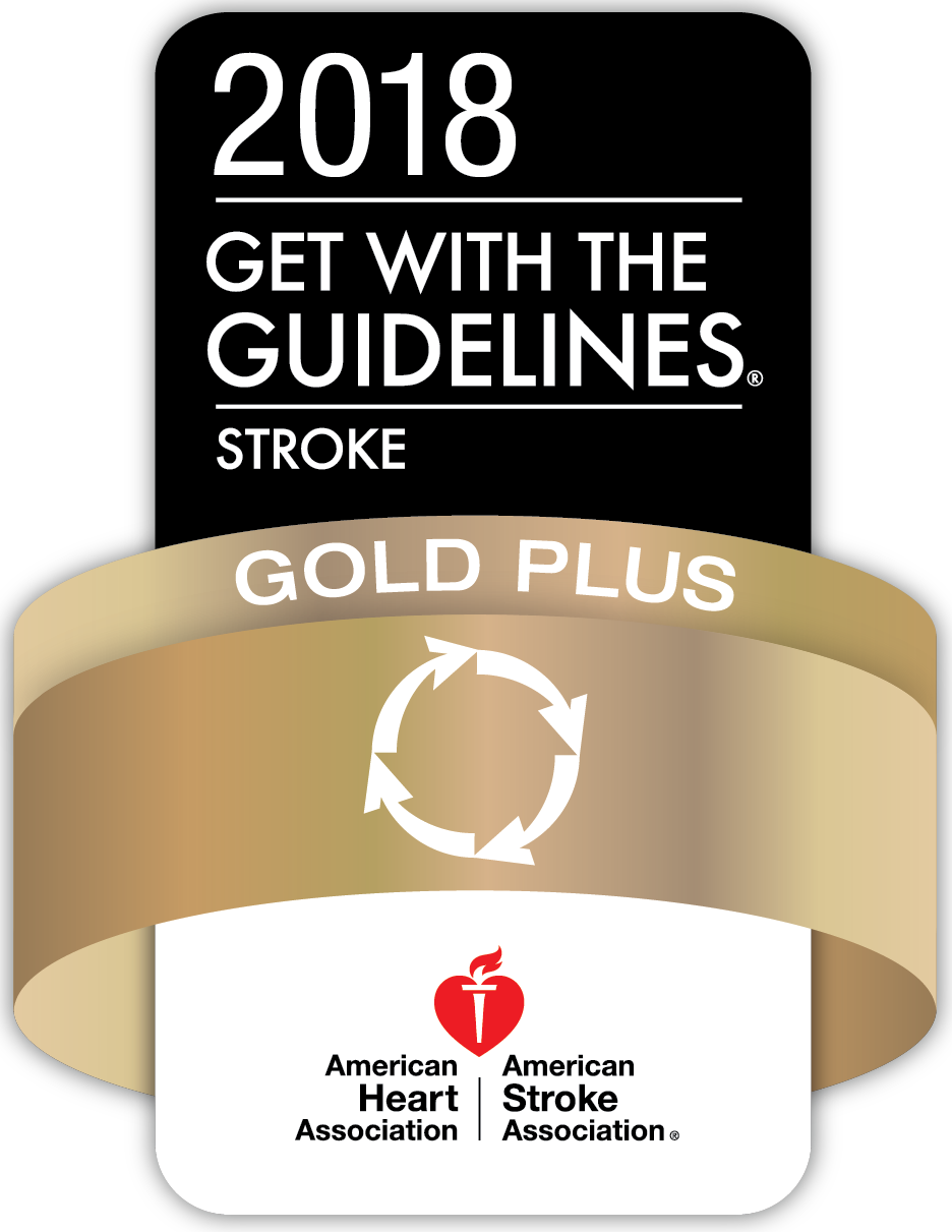 American Stroke Association Stroke Gold Plus Award - Get With the Guidelines