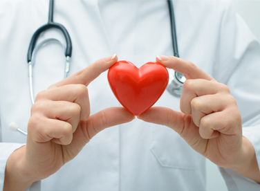 Photo of clinician holding a heart in their hands